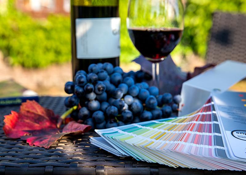 Farbfächer, ein rotes Weinblatt, blaue Weintrauben, ein Weinglas mit Rotwein und eine Weinflasche auf einem Tisch